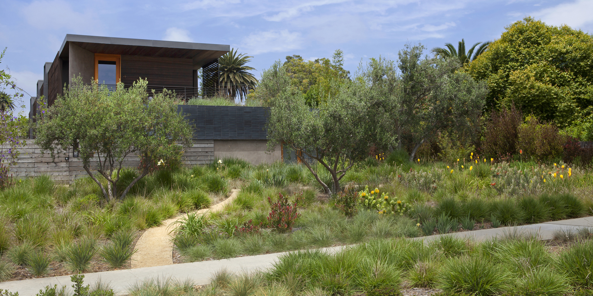 ... Stephen_Billings_Landscape_Architecture_Santa_Monica_5;  Stephen_Billings_Landscape_Architecture_Santa_Monica_4; Dillon Sbla  Losangeles ...